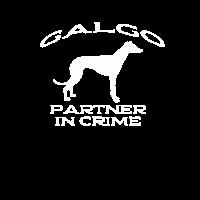 Galgo Windhund Hunde Partner Galgos Geschenk