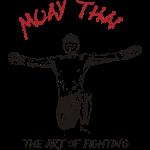 Muay Thai L'Art of Fighting