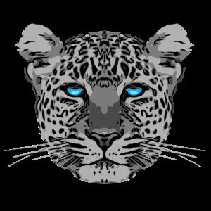leopard3 2