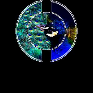 Pfauen Paradies Vogel Wasserfarbe Spritzer