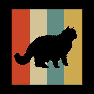 Perser Katze Perserkatze Katzen Geschenk