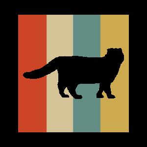 Himalaya Katzen Himalayan KAtze Geschenk