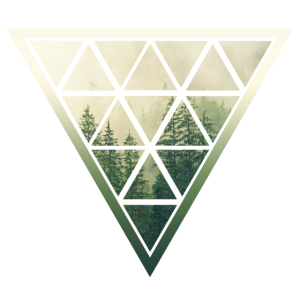 Dreieck Wald
