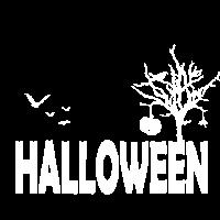 Spinne Halloween Kuerbis