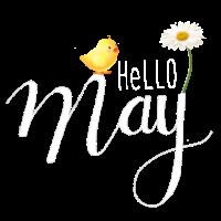 Helo Maj
