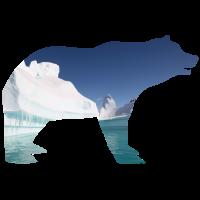 Eisbär auf Gletscher
