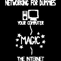 Internet Computer Netzwerk