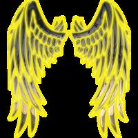 Angel sun wings