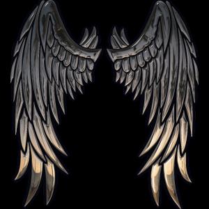 Angel raven wings
