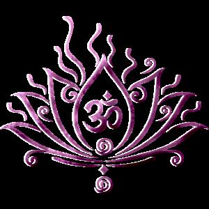 Lotusblume Om Symbol Yoga Lotus Lila