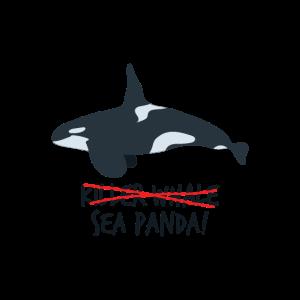 Killer Whale - Sea Panda!