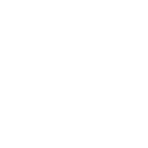 Evolution - Digitale Menschheit