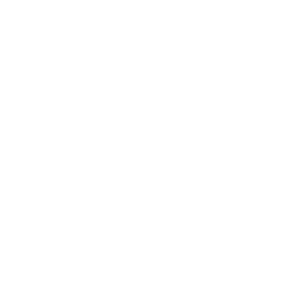 Rochen Manta Tauchen Taucher