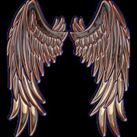 Angel bronze wings