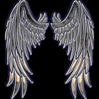 Angel cristal wings