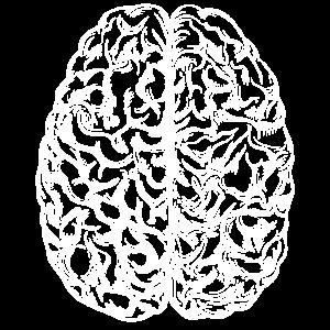 Gehirn white Science Chemie Biologie Hirn