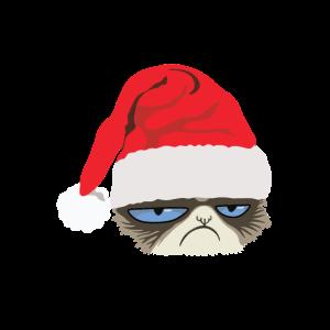 Grumpy Cat mit Weihnachtsmütze