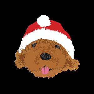 Süßer Hund mit Weihnachtsmütze