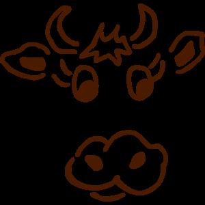 Kuh - Allgäu - Bayern