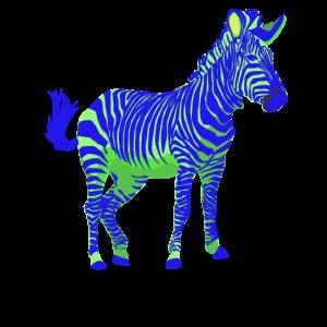 Zebra EDM