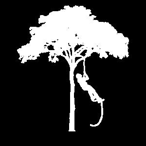 Baum Klettern Beruf Hobby Seil
