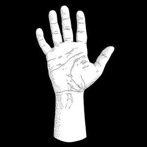 Minimalistische Hand / Fünf Finger
