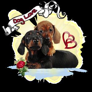 Hunde Liebe - Dog Love Motiv Shirt Dackel