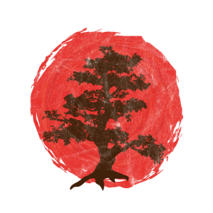 Bonsai Tree Baum Aufgehende Sonne Japan Geschenk