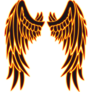 Angel shining wings