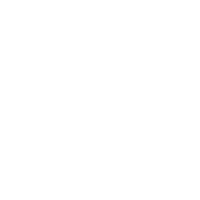 Halloween Spinne Michael Kuerbis
