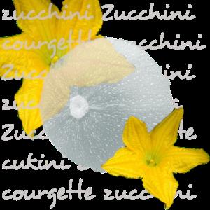 Zucchini grau mit Blueten