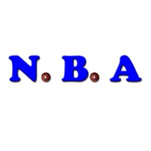 N.B.A basketball