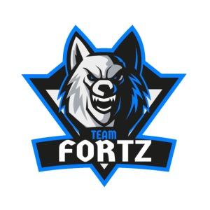 Team Ftz Logo