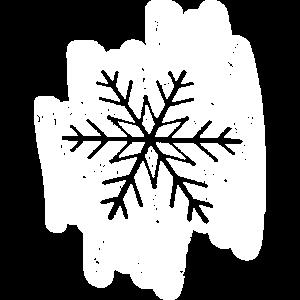 Eiskristall Schneeflocke Frost