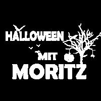 Spinne Halloween Moritz Kuerbis