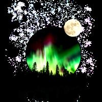 Aurora Nordlichter Space