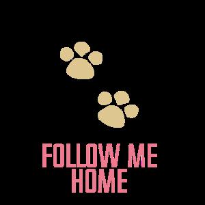 Follow me Home Hund Katze Haustier süss Geschenk