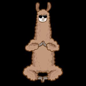 Sonnebrille Lama | Alpaka Tier Lustig Geschenkidee