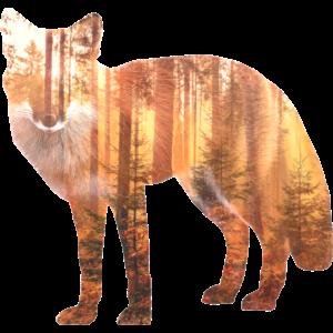 Fuchs Wald Geschenk Geschenkidee