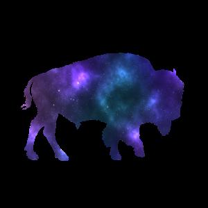 Galaxy Bison- Weltall Bison