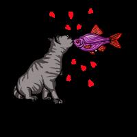 Küss mich Fisch