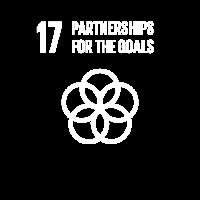 17 Partnerschaften für die Ziele Globale Ziele