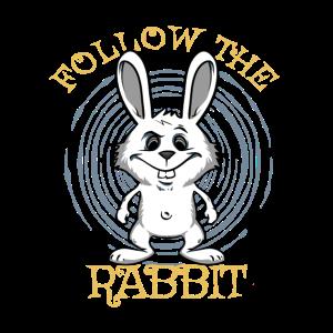 Follow the white rabbit. Weißer Hase Kaninchen