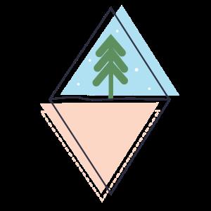 Green Christmas Tree/Chirst Season/ Evergreen Pine