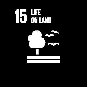 15 Globale Ziele für das Leben an Land