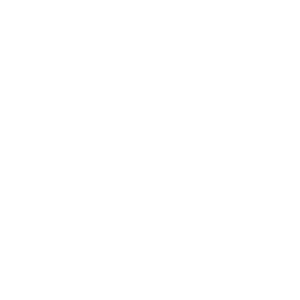 Skeleton Face Silhouette