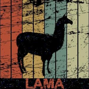 Lama retro - Alpaca, Peru, Spucken, Geschenk