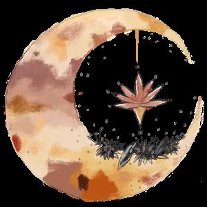 Mond Natur moon gold rosa Blumen flower Pflanzen