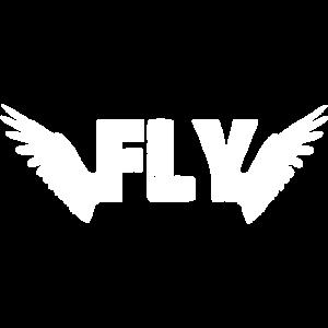 Fluegel Fly Fliegen