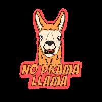 no drama llama | kein Drama Lama | Geschenkidee
